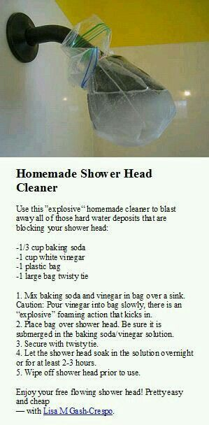 How To Clean Your Shower Head